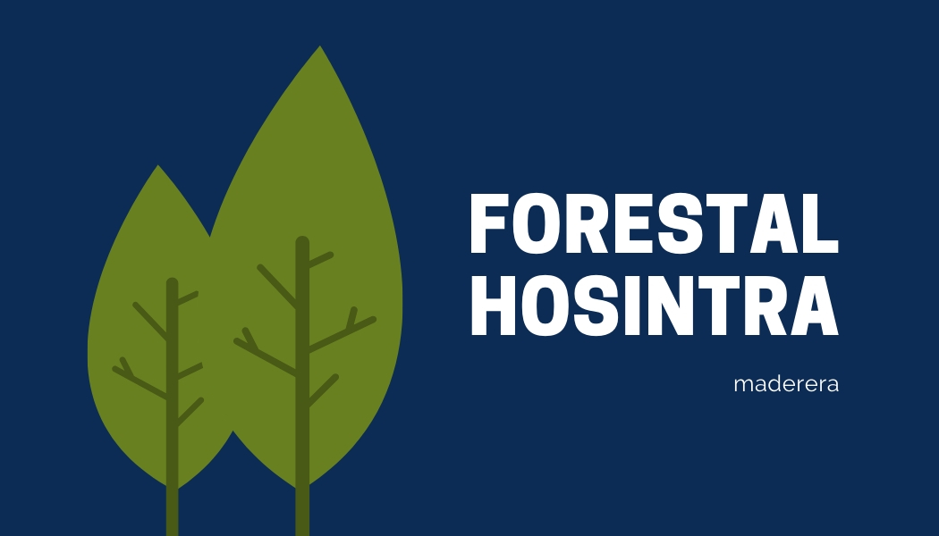 Forestal Hosintra